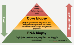 This pyramid highlights that with an open biopsy the diagnostic yield is high at the expense of cost. However, core biopsies can give you some idea of microarchitecture but less expensive. If you are suspecting lymphoma then proceed if core biopsy. An FNA is useful in checking for recurrence.