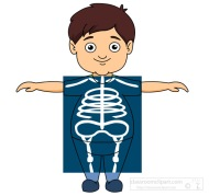 boy taking an x ray clipart