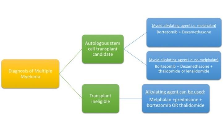 myeloma treatment
