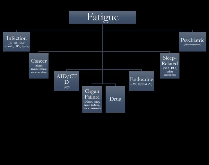 Fatigue DDx