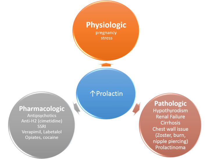 high-prolactin-causes